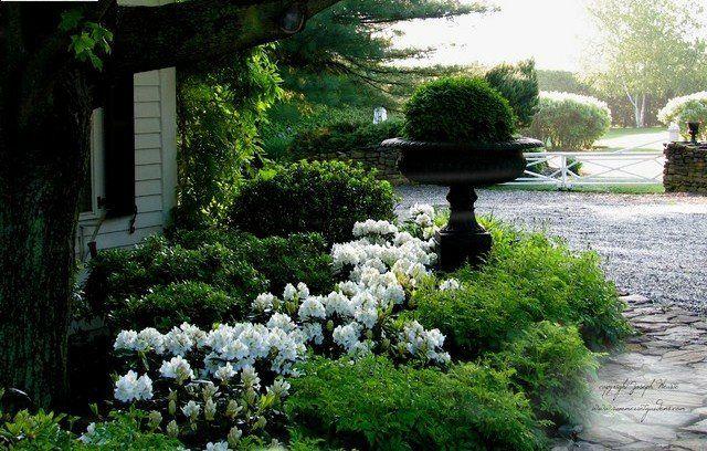 Rhododendron Im Garten Gestalten Ideen Schone Landschaft Azaleas