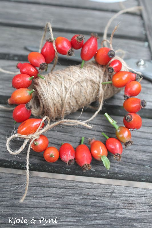 seidenfein 's Dekoblog: Hagebuttenkränzchen & Mini DIY * rosehip wreath #wreaths