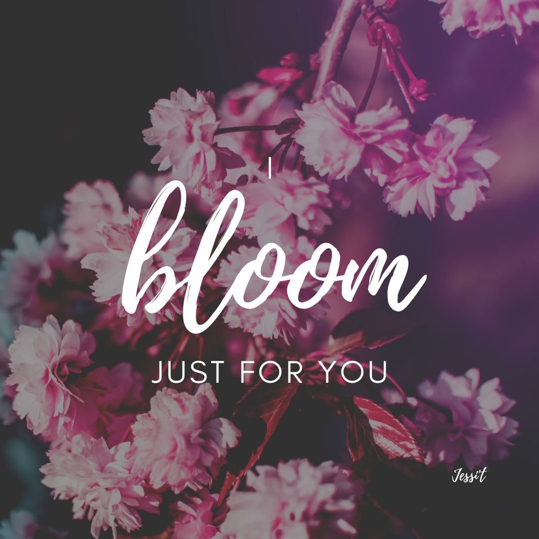troyesivan bloom music lyrics typography font