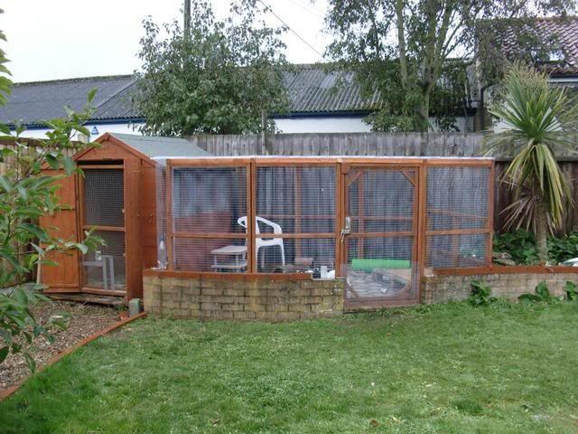 Outdoor housing rabbits united forum rabbits for Outdoor rabbit enclosure ideas