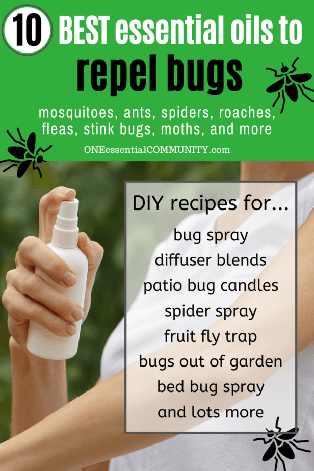 Top 10 Essential Oils That Repel Bugs + Bug Spray Recipe
