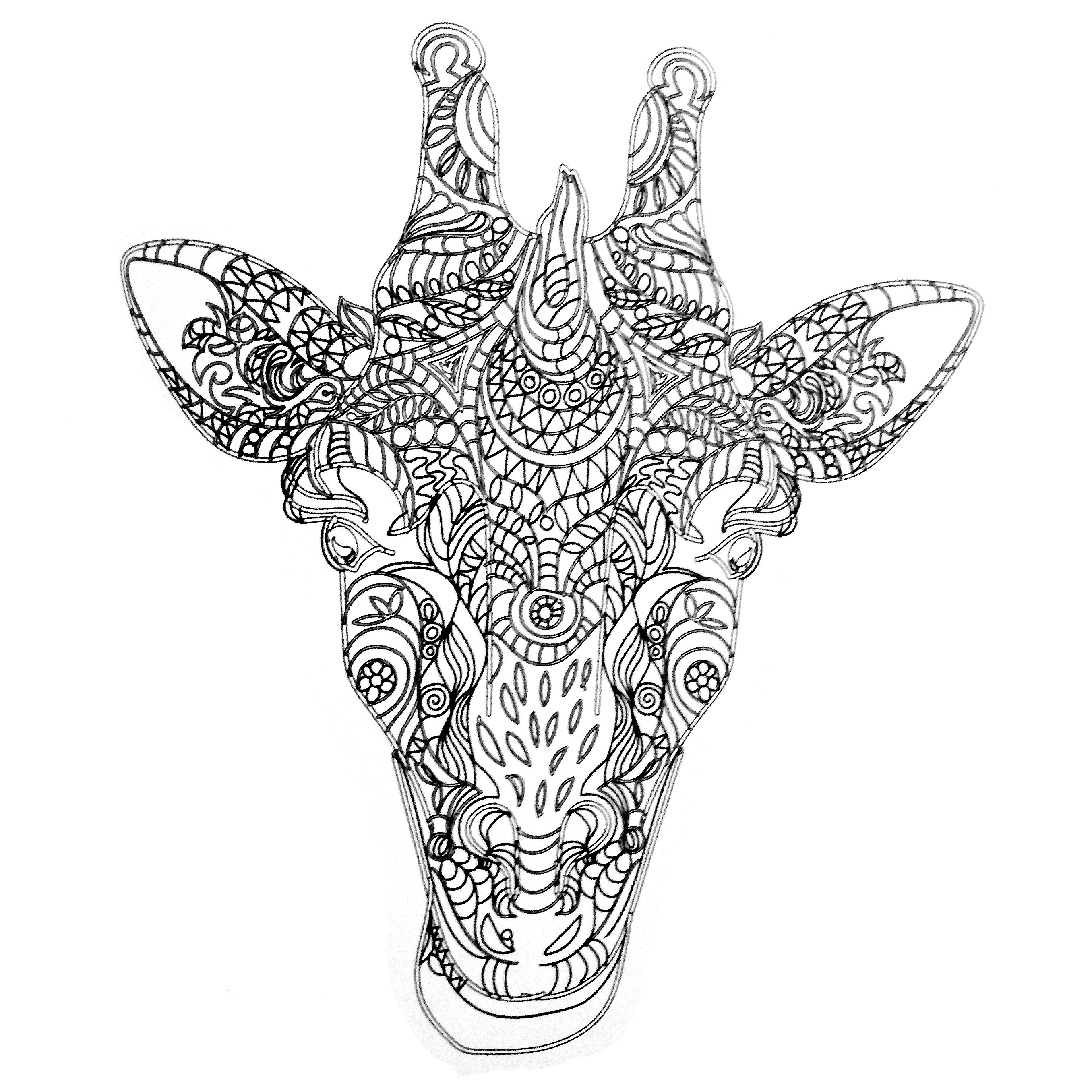 Colors Of Nature Adult Colouring Book Giraffe Coloring Pages