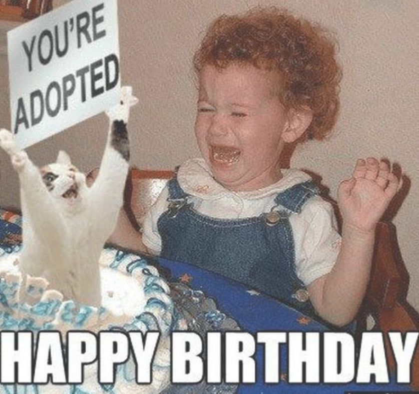 91 Sister Birthday Memes Happy Birthday You Re Adopted With