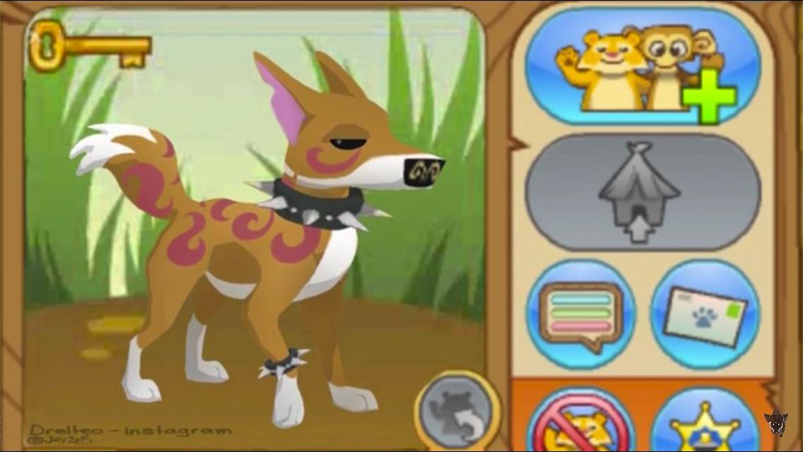 Someone Made This Future Animal Dingo Aj Animals Animal Jam