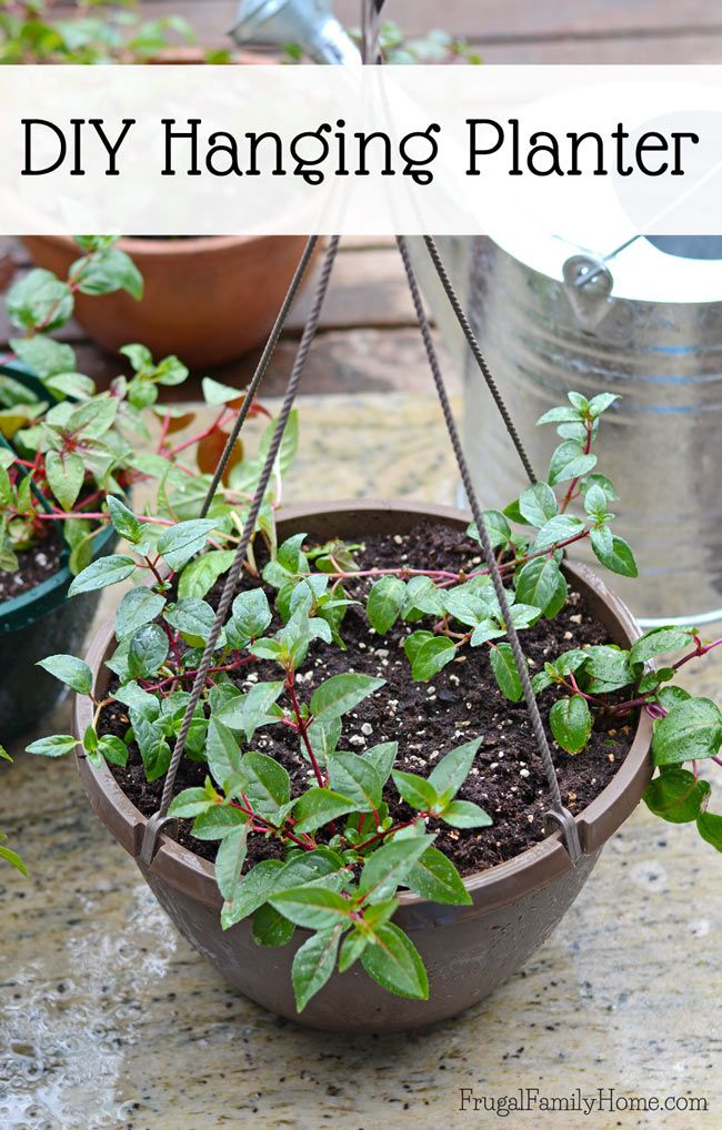 3 Great Garden Gift Ideas for the Mother\'s Day | Gardens, Garden ...