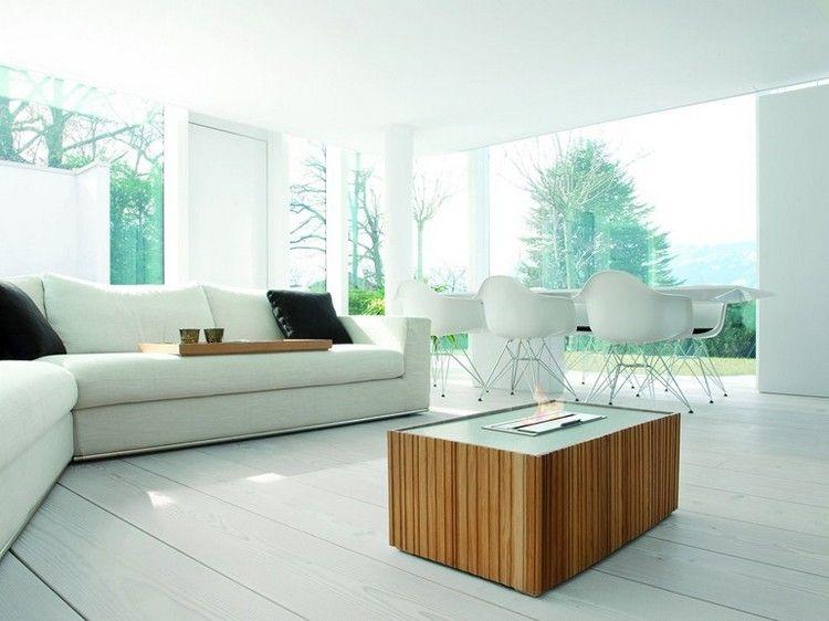 moderne-kaminofen-bioethanol-holz-offene-flamme-wohnzimmer-AXIS - offene feuerstelle wohnzimmer