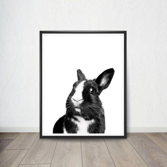 Rabbit Poster Black and White Animal by BellaDigitalPrints on Etsy ...