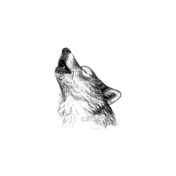 Howling Wolf Tattoo Liked On Polyvore Featuring Accessories I Body Art Howling Wolf Tattoo Wolf Tattoos Wolf Howling