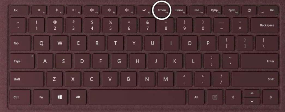 How to Screenshot on Laptop in Windows 10? Ways for You