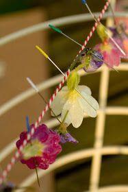 Basta jener Schale: Frühling :: Kristallisierte Blumen The post Genug damit wel…