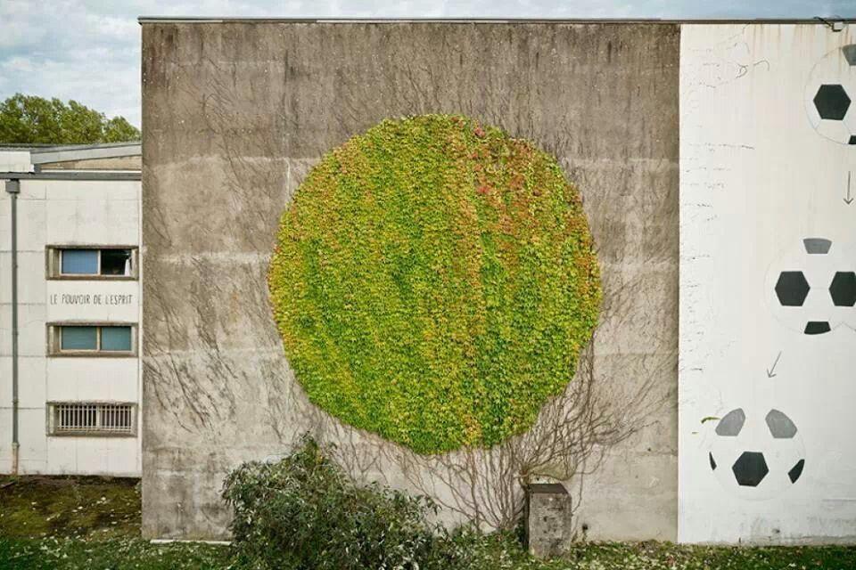 Murales botanici