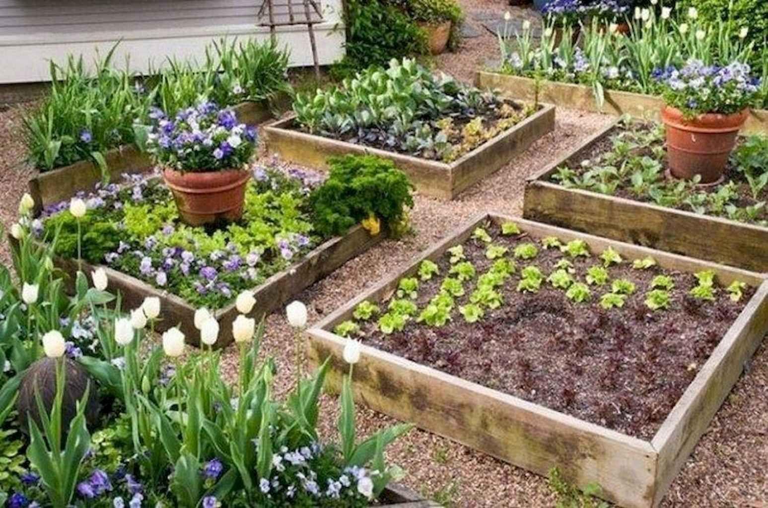75 Stunning Backyard Vegetable Garden Design Ideas Homekover Garden Layout Vegetable Diy Raised Garden Backyard Vegetable Gardens Backyard garden bed ideas