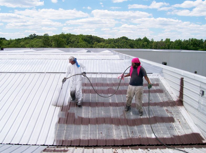 With More Than 20 Years Of Experience We Offer All Types Of Affordable Roof Painting Sydney Services We Have A Te Roof Paint Roof Coating Roof Waterproofing