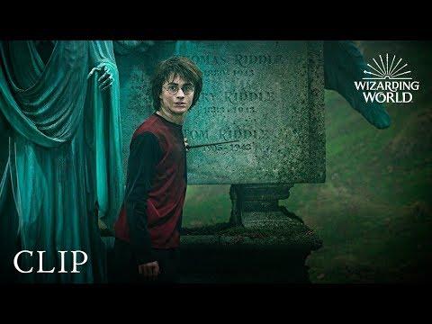 Pin By Vastika Goel On Harry Potter Harry Potter Dark Lord Wizarding World