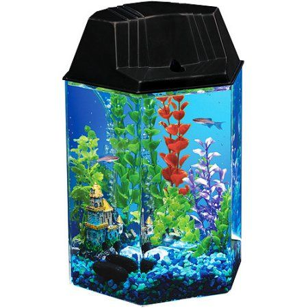Hawkeye 1 6-Gallon Hexagon Aquarium Kit with Internal Power