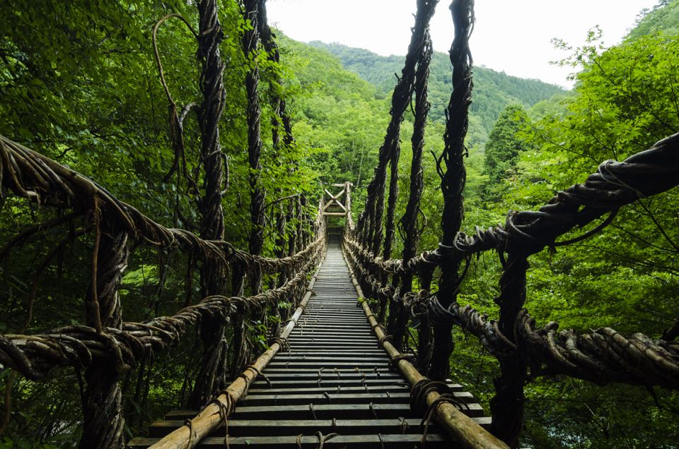 Miyoshi-shi, tokushima-ken, Japanで撮影された奥祖谷二重かずら橋の写真 BRIDGE to The UNEXPLORED REGION : パシャデリック