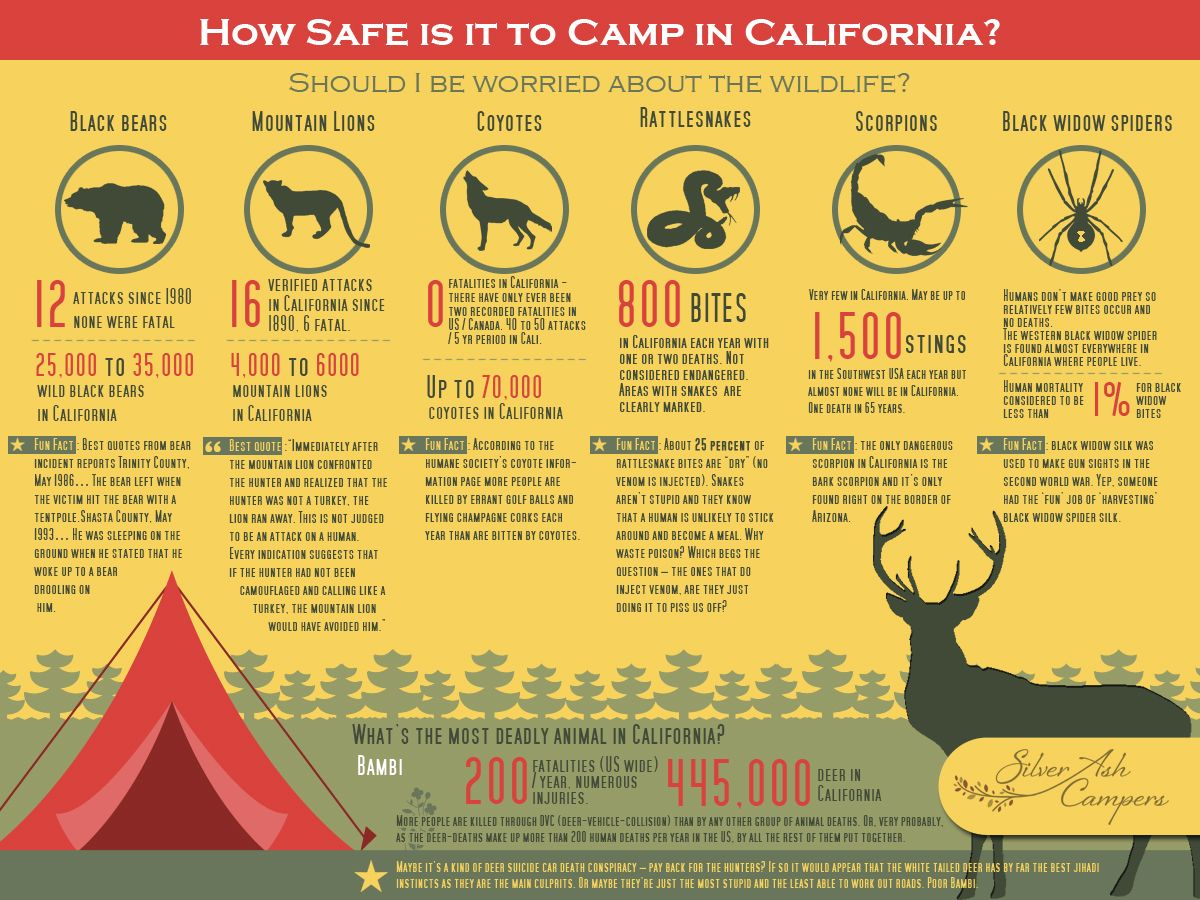 How safe is it to camp in California?- Silver Ash Campers