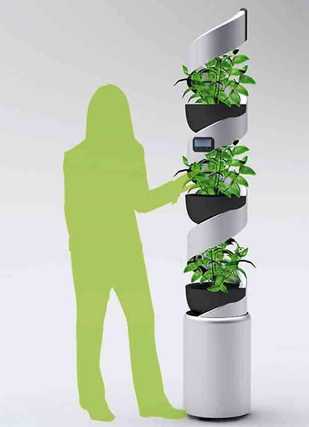 hidropônica vertical-com-pessoa | vida verde | Pinterest