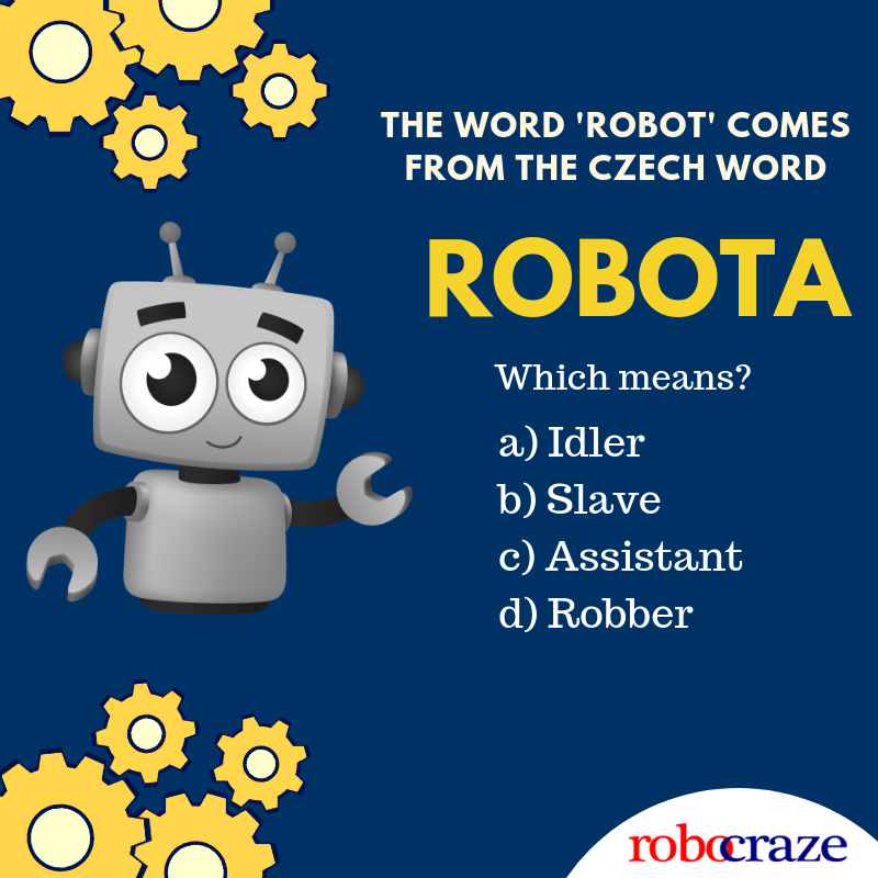 Robots are cute. We all love them! But do you know what