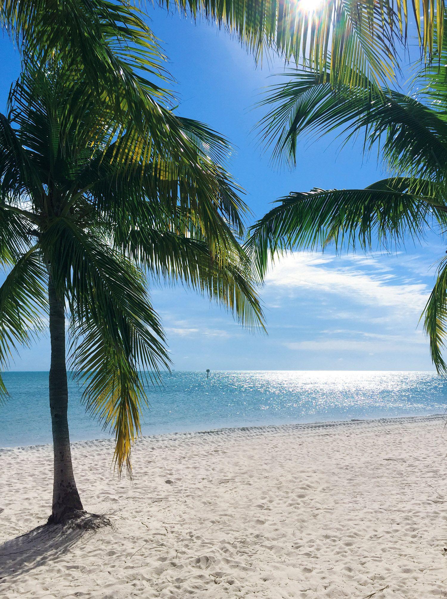 travel diary key west  weihnachten unter palmen  urlaub