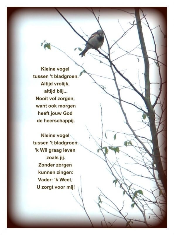 Bijbelcitaten : Pin van geloven enzo op fotogedichten gedichten mooie