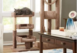 Give your favorite feline friend something to purr about with these fun finds. Cats will find hours of happy entertainment with multi-level cat trees and scratchers equipped with kitty-approved toys. After a long day of play, they'll love curling up in a cozy canopy bed.http://www.wayfair.com/daily-sales/Cat-Trees-%26-Cozy-Beds~E15840.html?refid=SBP.rBAZEVLSM2I0DyL1Mh_hAmTb7T7NdU6luC_R85lKccc
