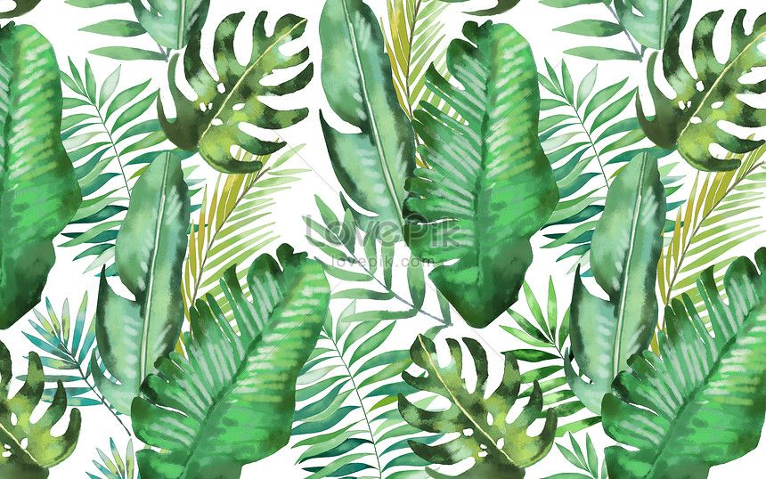 Watercolor Background Of Tropical Leaves Hand Painted Tropical