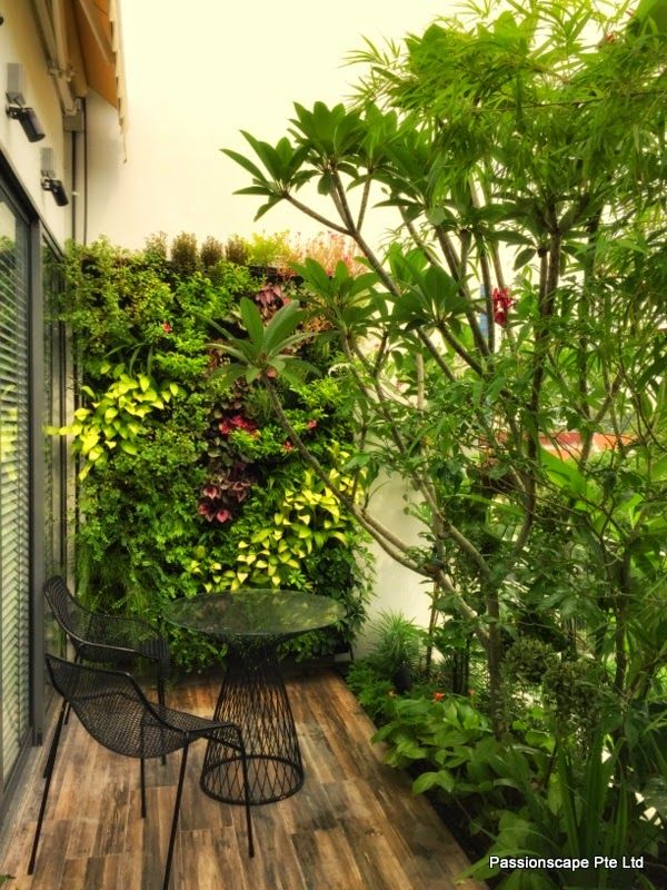 Living In A Penthouse Can Be A Benefit For Most In Any Case Relatively Few Will Appreciate Completely Landscape Design Balcony Plants Vertical Garden Design