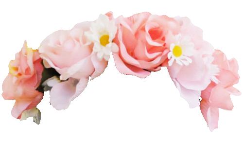 Transparent Flowers Flower Crown Drawing Snapchat Flower Crown Transparent Flowers