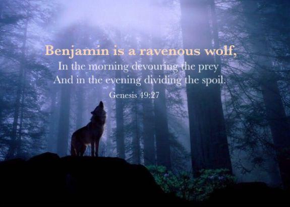 Resultado de imagen para GENESIS 49:27