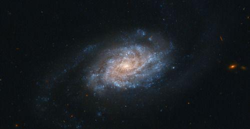 """ NGC 3455 / http://flic.kr/p/cr6mHy / by geckzilla """