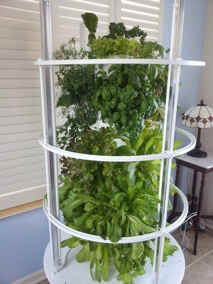 Grow indoor! Tower garden