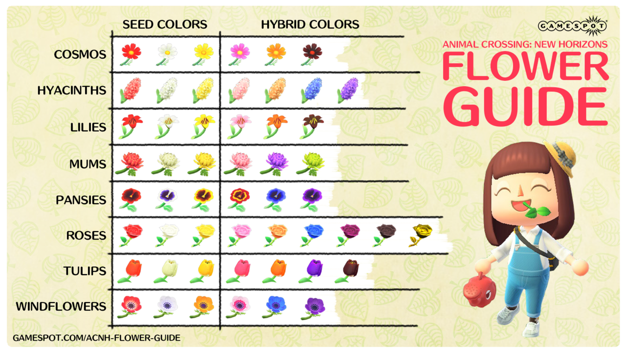 A chart showing all the flower species in Animal Crossing