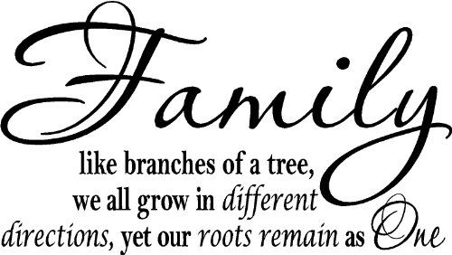 Family Branches Wall Quote, Wall Words, Wall Decor, Quotes