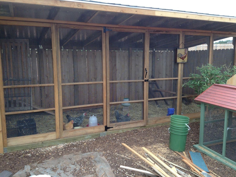 Deluxe west texas coop chickens backyard coop chickens