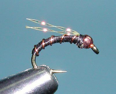 Zebra Midge Fly Tying Patterns Midge Fly Patterns Fly Fishing