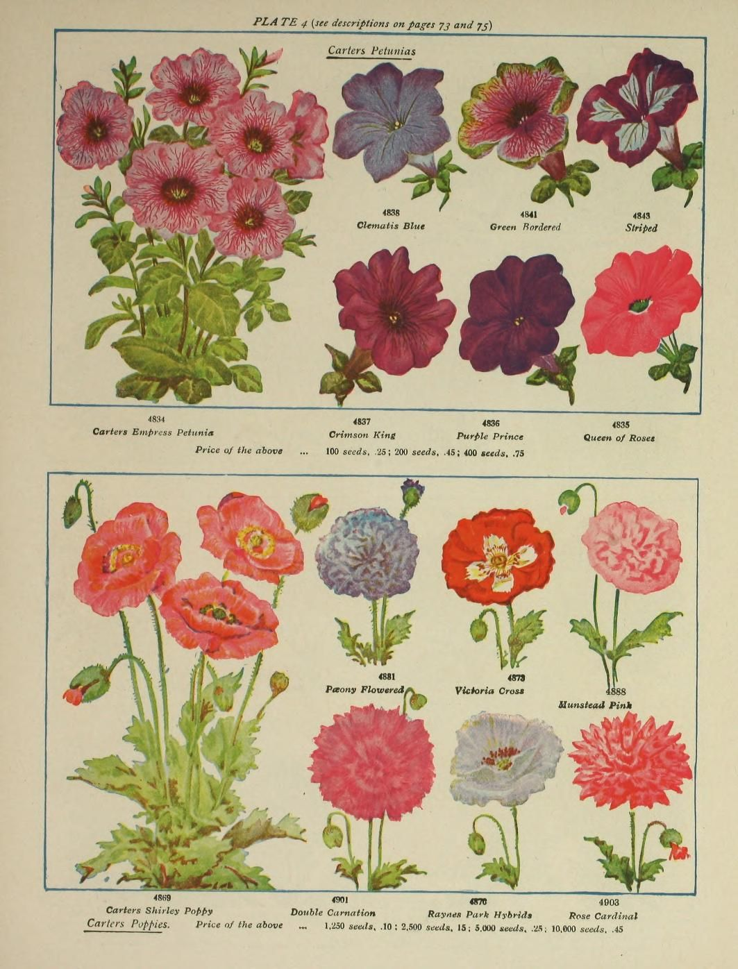James Carter & Co. - Seed Catalogue - 1842