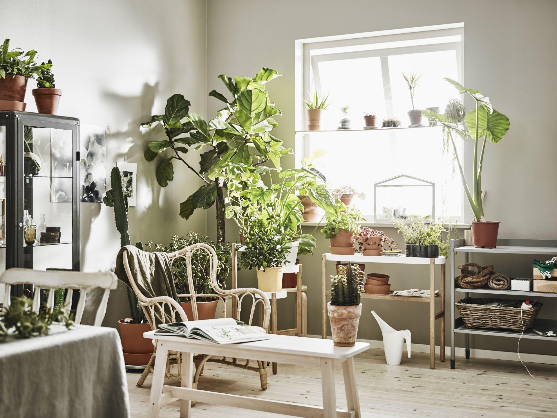 Mastholmen fauteuil buiten nieuw bij ikea pinterest greenery