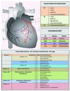pediatric ecg interpretation an illustrated guide pdf