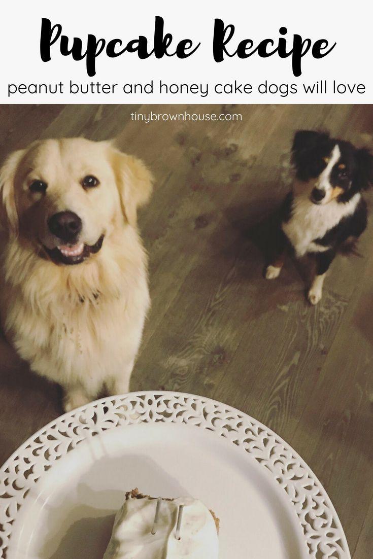 Dog Friendly Birthday Cake Best Of The Best Blog Posts Pinterest