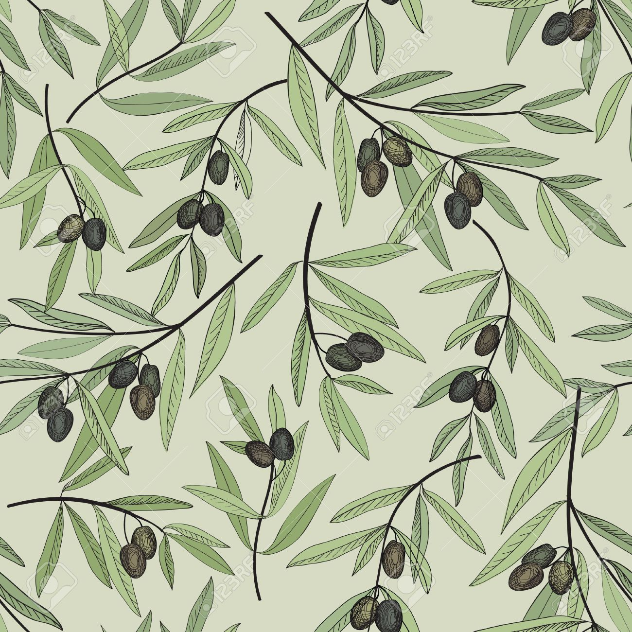 Image result for olive branch vector | Tattoo love | Pinterest