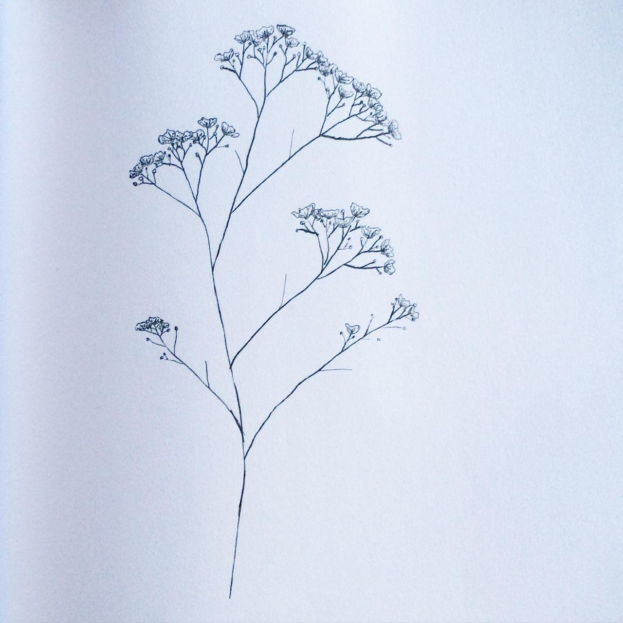 Colleendavis Aquarell Malen Zeichnen