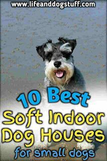 10 Best Soft Indoor Dog Houses For Small Dogs Funny Dog Captions