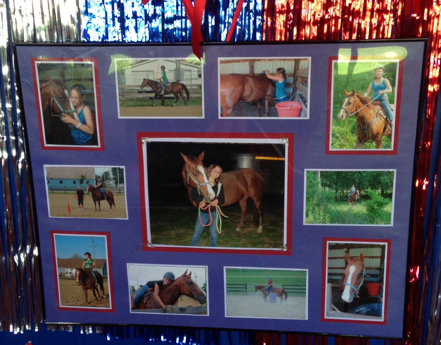 Designed This For Front Of Horse Stall Decorating At Local Fair