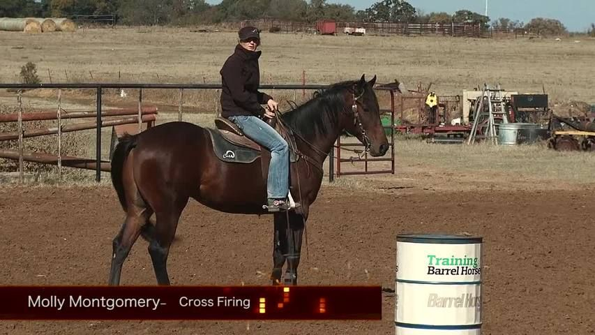 how to train a horse to barrel race