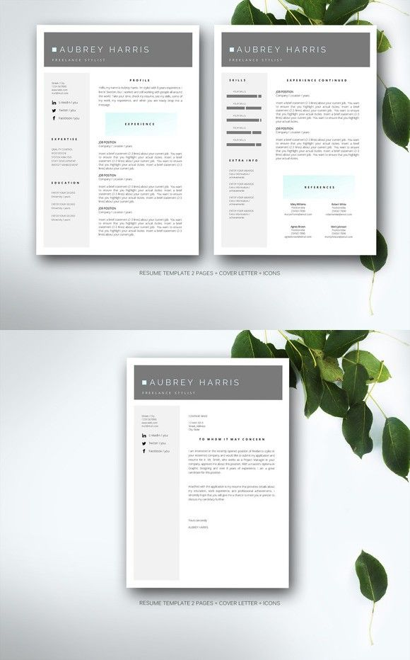 Resume template for MS Word Template and Cv template