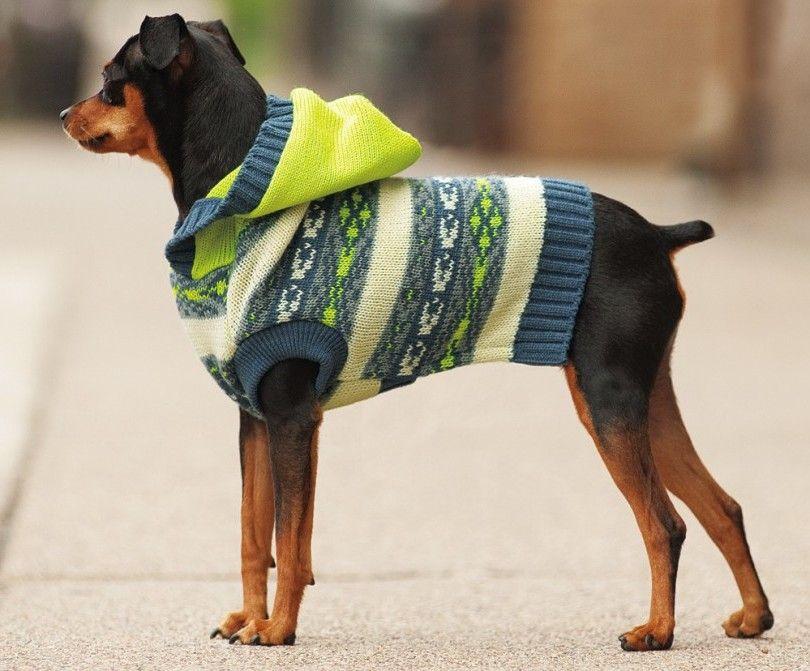 hundepullover stricken 42 warme ideen strickanleitung diy hundepullover stricken. Black Bedroom Furniture Sets. Home Design Ideas