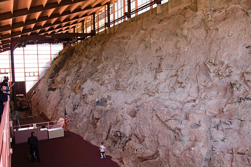 Image result for dinosaur national monument