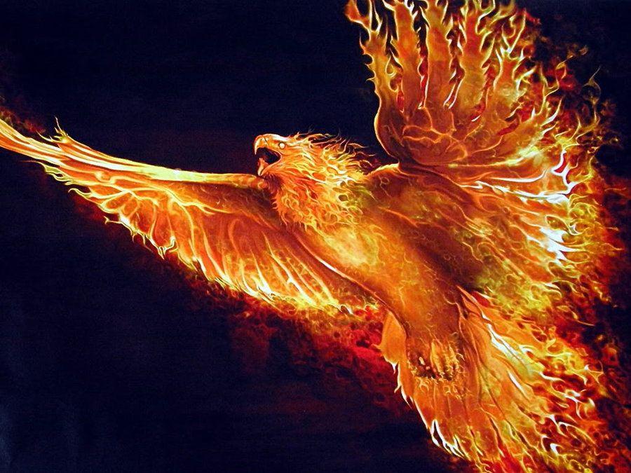 Resultado de imagen para fenix renaciendo de sus cenizas catrinas ideas phoenix wallpaper - Fenix bird hd images ...