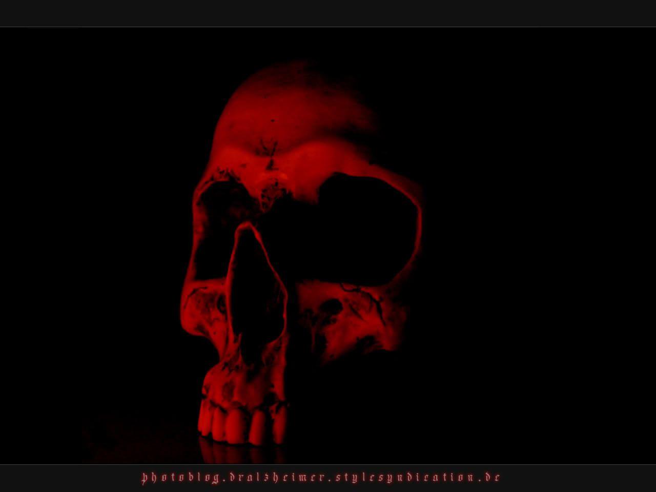 Red Skull Wallpaper Red Skull Desktop Background Black Skulls Wallpaper Red Skull Skull Wallpaper